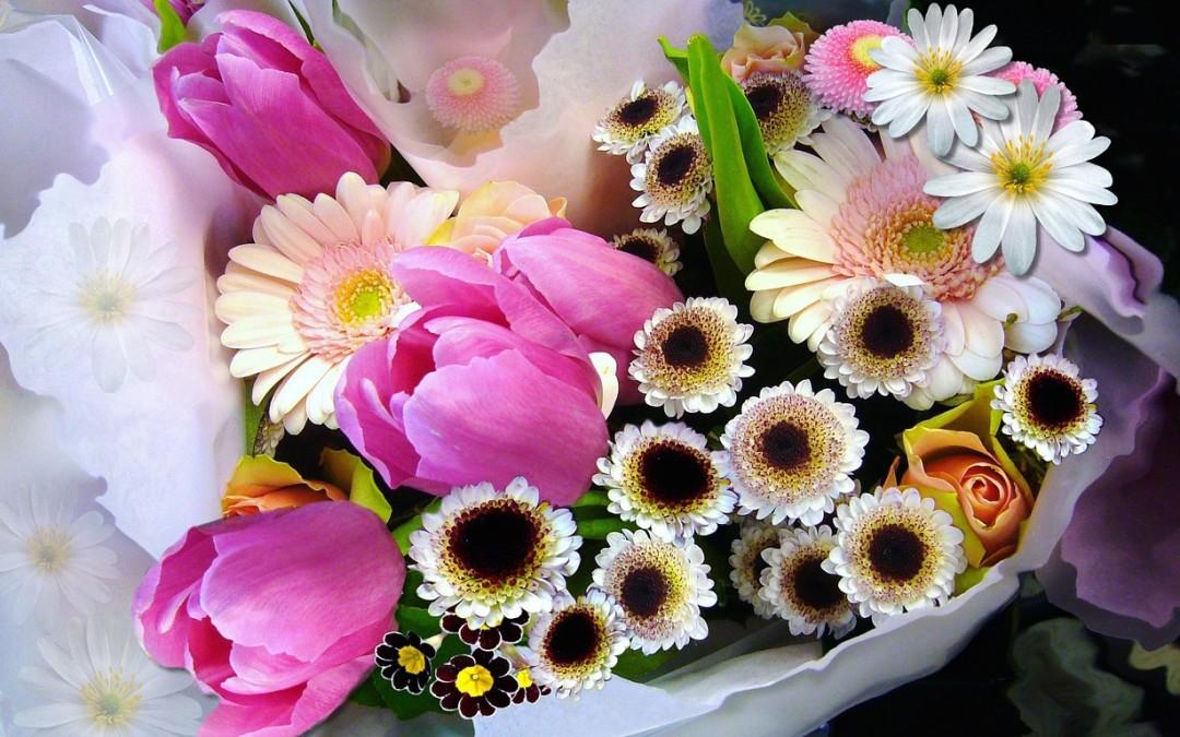 Iets te vieren? Vier het met bloemen!